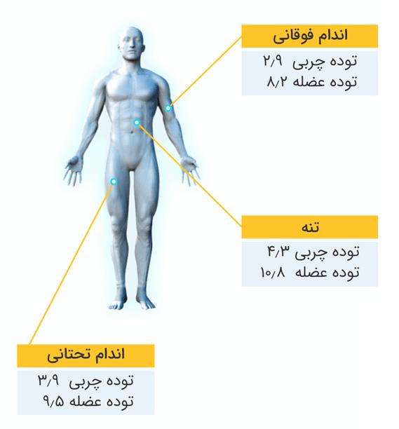 Check body composition-1