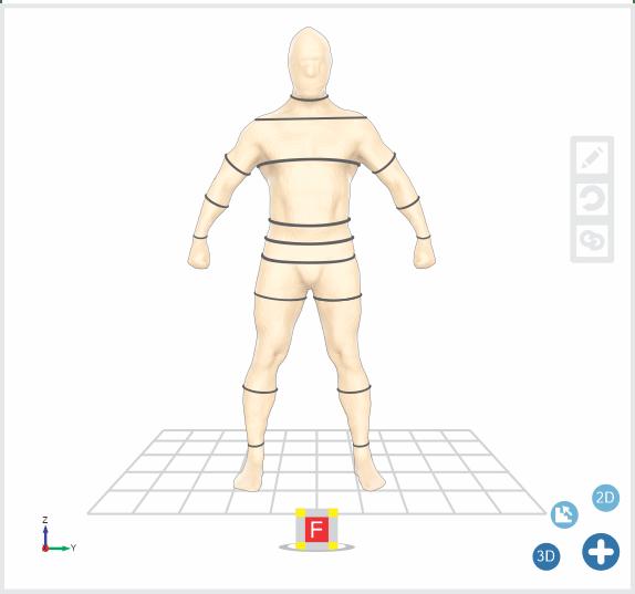 Dimensional-body-size-1