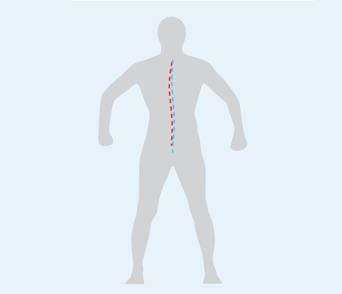 Examination-of-skeletal-form-1