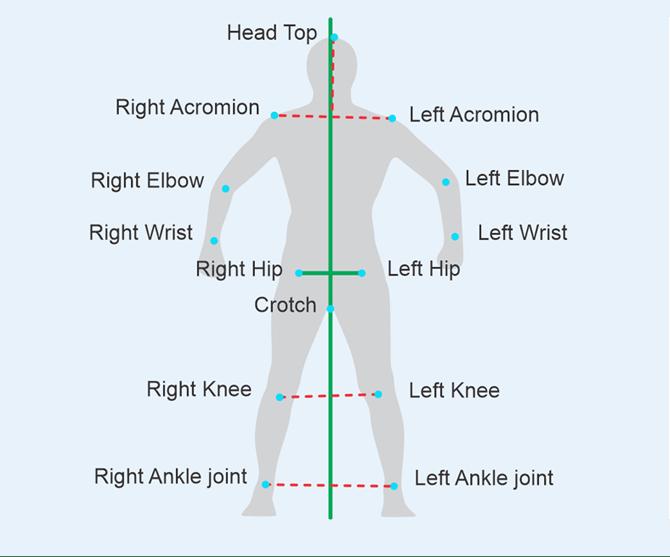 Examination-of-skeletal-form-3