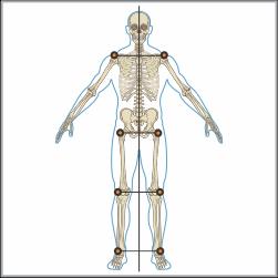 Posture-Analysis