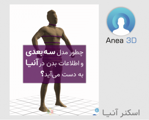 3D model and body data collected